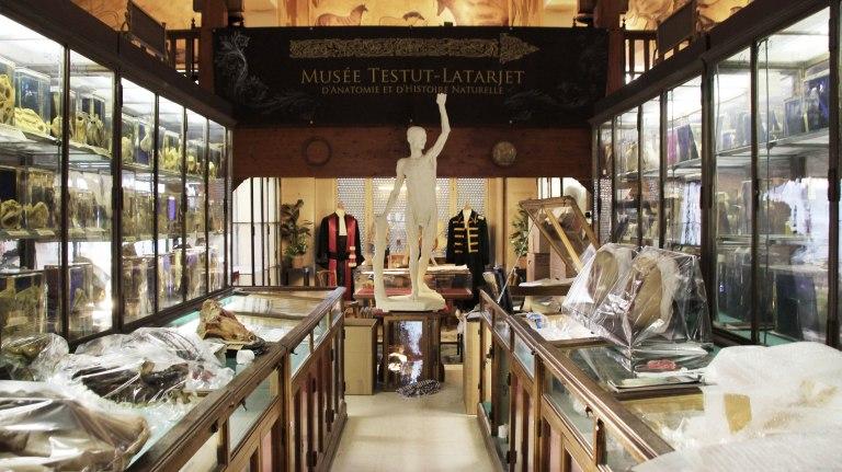 Entrée dans le musée Testut-Latarjet Crédits: Camille Rolin