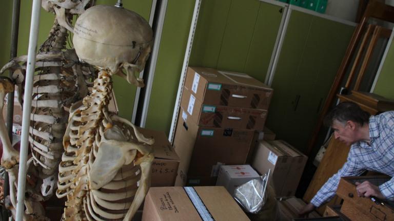 Empaquetage et déménagement des collections d'anatomie
